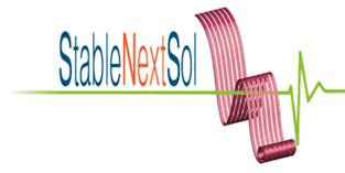 Stable Next-generation Photovoltaics logo